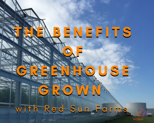 The Benefits of Greenhouse Grown