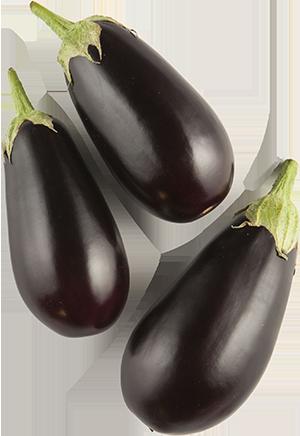 Mini Eggplant Purple